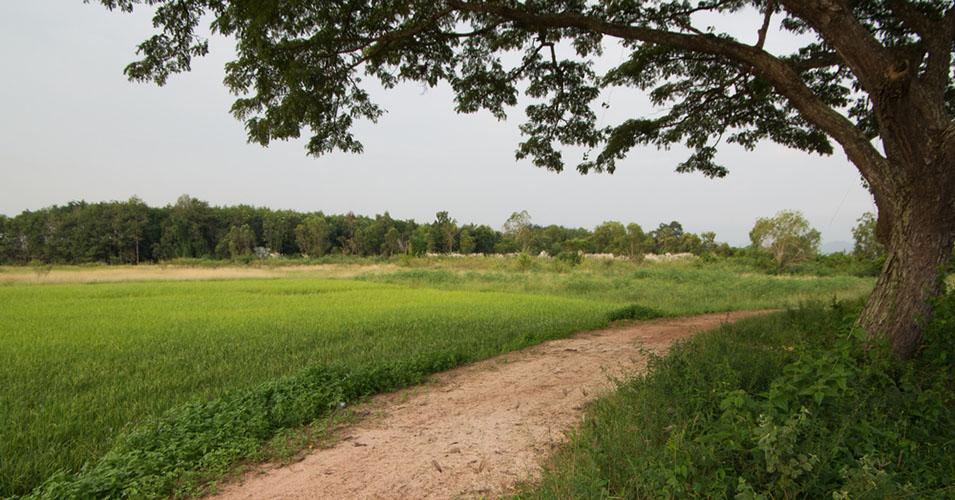 Paseos casa rural